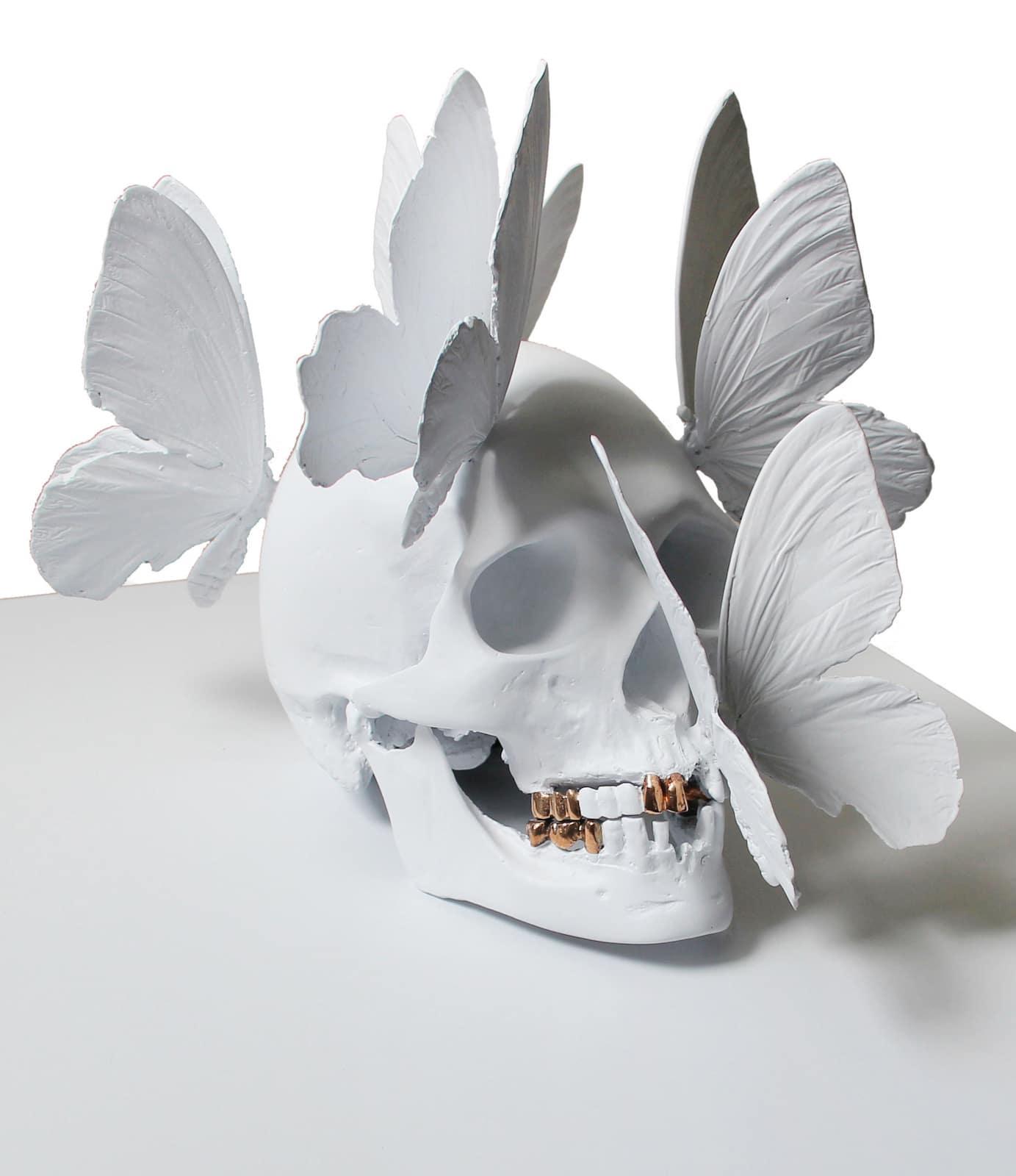 Crâne - Pasqua
